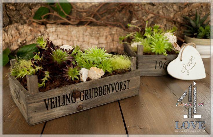 #Σύνθεση #παχύφυτων σε ξύλινο #τελάρο που μπορεί να τοποθετηθεί σε εσωτερικό και εξωτερικό χώρο. #4LOVEgr  - Floral Artist Ντίνος Μαβίδης & Concept Stylist Μάνθα Μάντζιου