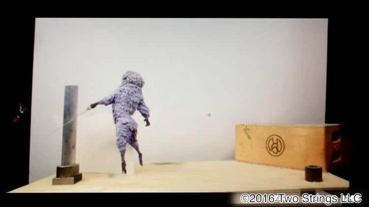 Fight test monkey