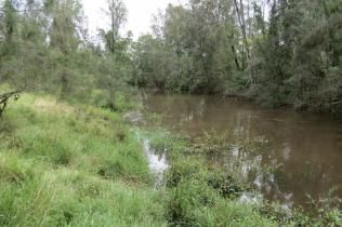 Finding acreage or farms for sale in Grafton, NSW has never been easier