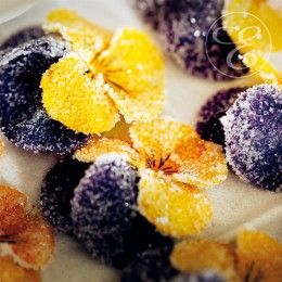 Essbare Blüten - [ESSEN & TRINKEN]  #blüten #blumen #veilchen #kandiert #backen #flowers #sweets #violets #candied #baking #eversundtochter