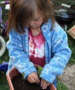 Plant A Pizza Garden. What Do Kids Love More Than Pizza? What About Growing  Their Own Pizza Toppings? Spring Is The Perfect Time To Get A Garden  Startedu2014all ...