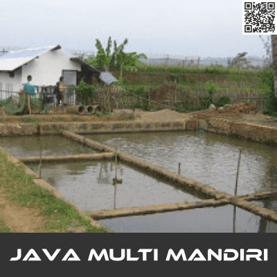 Kualitas Air Budidaya Lele Kolam Tanah