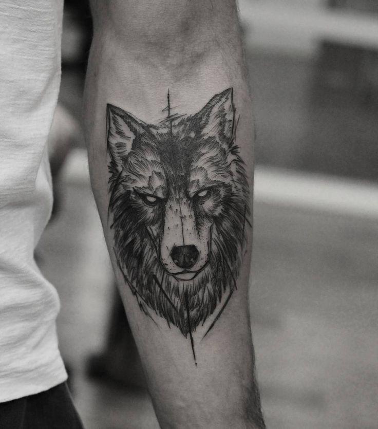 wolf, sketch-illustrative