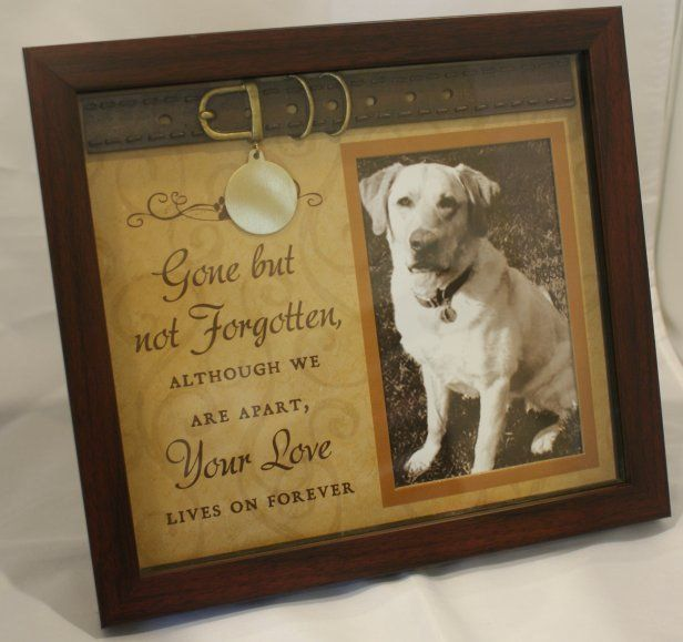 pet memorial plaques with photo - Google Search