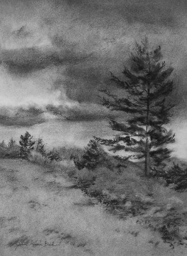 Learn Drawing and Shading A Landscape Art With PENCIL ...  |Charcoal Drawings Of Landscapes