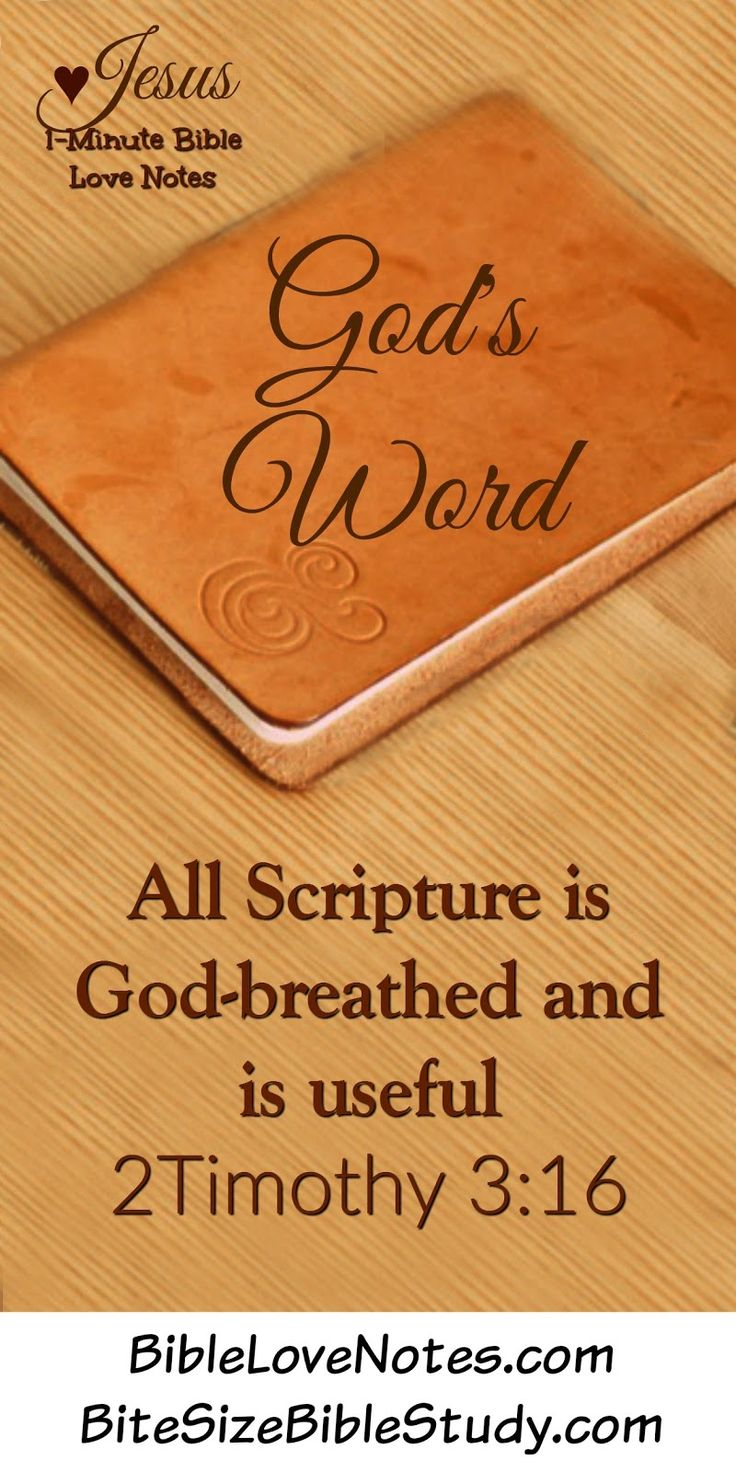 God-Breathed - God's Word is an incredible treasure ~ The Bible has touched millions of lives throughout history—male and female, adult and child, rich and poor, scholar and uneducated.  No matter how long we've been Christ-followers, it's good to periodically remember the wonderful character of God's Word. [...]