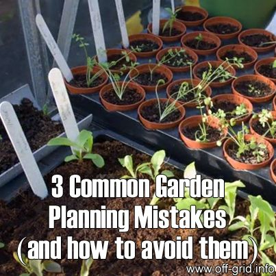 3 Common Garden Planning Mistakes (and how to avoid them) - Off-Grid