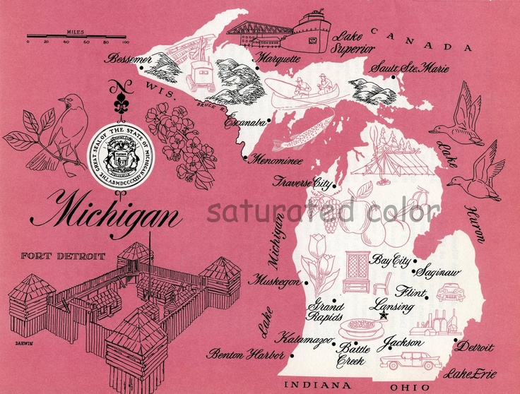 102 best Michigan images on Pinterest  Mackinac bridge Mackinac