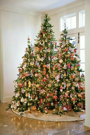2249 best christmas trees images on pinterest for What to put on top of my christmas tree