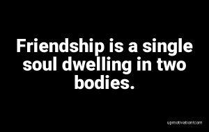 Friendship is a single soul image