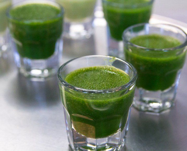 WHEATGRASS IS INTENSE. And so is this list of, count 'em, fifty reasons get this living green liquid straight into your belly. Doctors Brian and Anna Maria Clement run the Hippocrates Health Institute and are leaders in the field of natural health and healing. Just like a shot of fresh wheatgrass, the Clements and the HHI will give it to your [...]