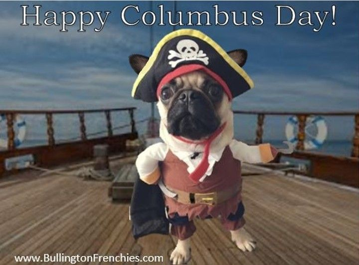 Happy Columbus Day Today We Celebrate The Discovery Of America We Hope You Explore Ways To Have A Great In 2020 Happy Columbus Day French Bulldog Breeders Your Dog