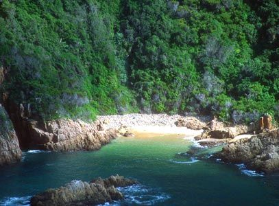 Featherbed Nature Reserve, Knysna, Western Cape, South Africa. BelAfrique your personal travel planner - www.BelAfrique.com