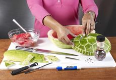 How to make a Watermelon Turtle