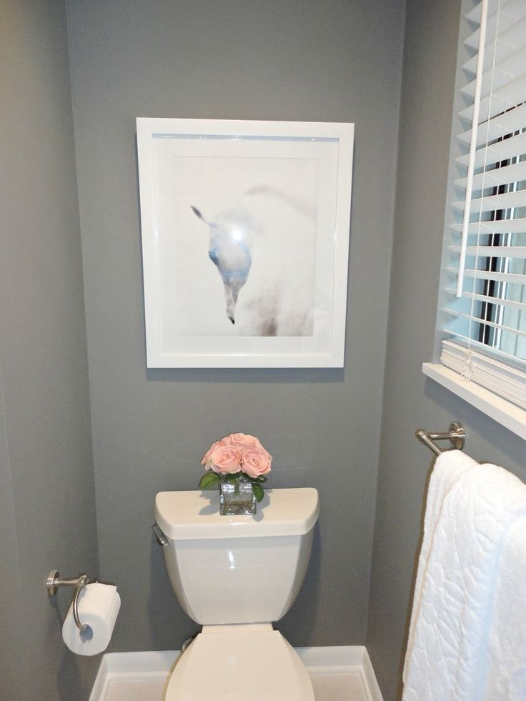 Images Photos Wonderful Grey Painted Wall Small Diy Bathroom Remodel With White Animal Wall Photos Have Toilet Seat And Bathroom Towel Racks Also Tissue Holders Tips on