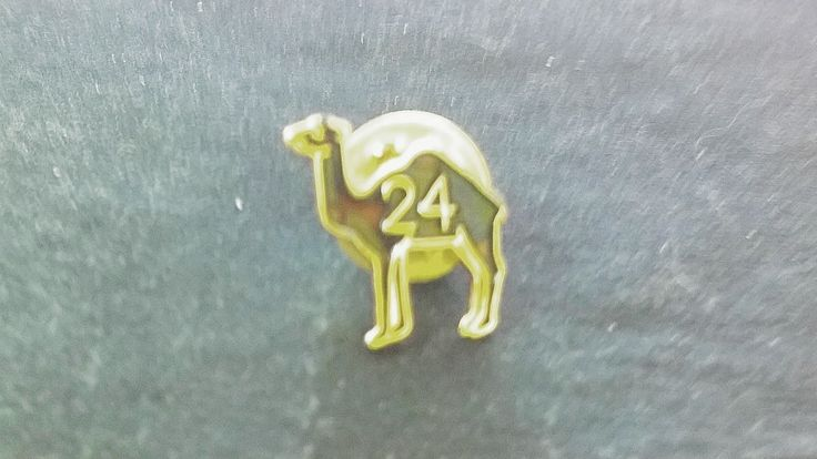 My rehab camel  #rehab #alcoholic #sobriety #sober