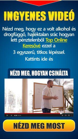 Ingyenes magyar nyelvű Tréning videóval. az http://i-dog.hu/web/robi.blog/page-8 kapu oldalanon vagy a highway(pont)empowernetwork(pont)kom blogomon.