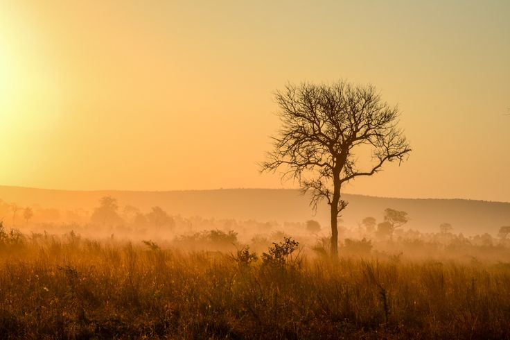 The best Kruger campsites, north to south