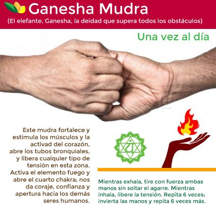 Ganesha Mudra. Cerradura de Oso