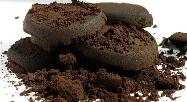 Interesting use of the coffee grounds - learn more by clicking on the picture