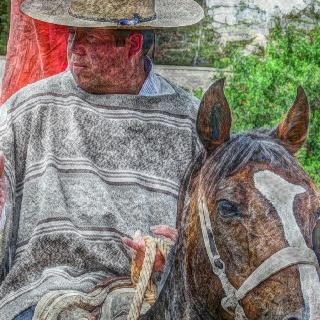 Chilean cowboy...Houso