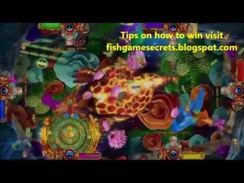 Game Mancing Ikan Is A Popular Underground Arcade Game Here Are 8 Fish Shooting Game Tips Guaranteed To Win Real Money In 2021 Casino Casino Bonus Online Casino Bonus