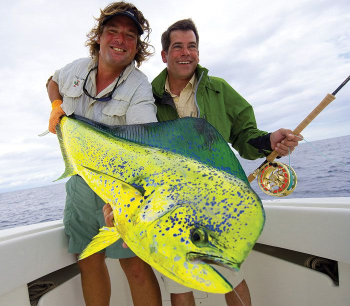 17 best images about saltwater fly fishing on pinterest | the, Fishing Reels