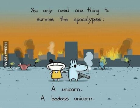 The only thing needed to survive the apocalypse. Badass Unicorn.