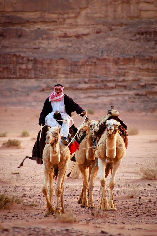 Bedouin, Wadi Rum (Jordan) >> Wadi Rum is a strict nature reserve in southern Jordan, perhaps best known for its on-location shooting in the film classic Lawrence of Arabia. ||