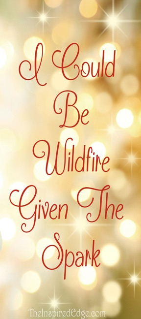 """I could be wildfire given the spark"" #Quote by #KenGauthier  Please like & repin"