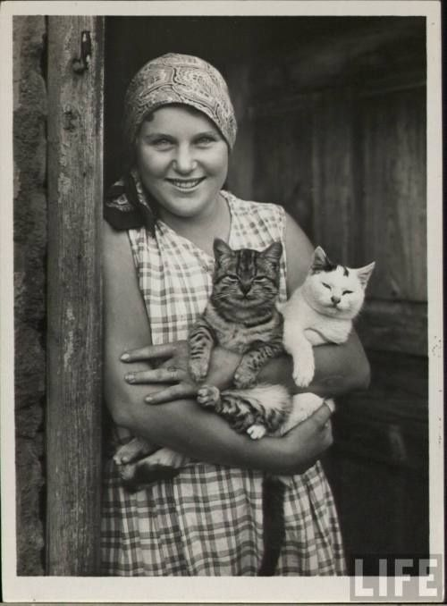 vintage cat photos | everyone in this picture looks happy