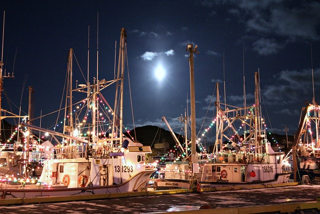Christmas Parade on water! Port de Grave, Newfoundland. by deanspic