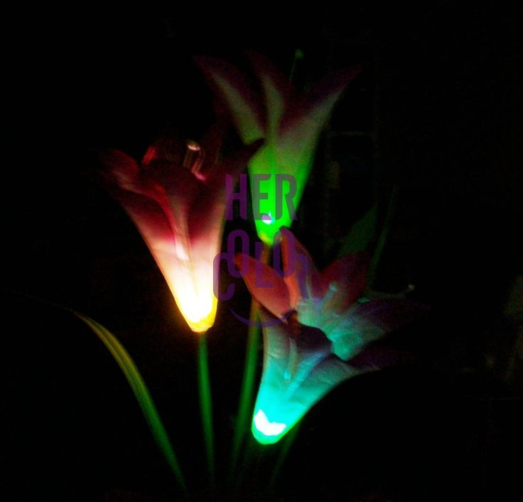 28 Best Images About Solar Lighting On Pinterest Neon Decorations Solar And Patio
