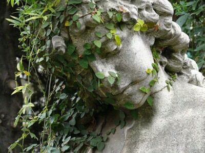 We used to visit the graveyard and I would touch the statues, all wrapped in vines - Did they look sad or just thoughtful?