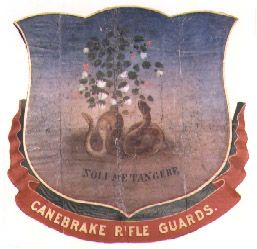 4th Alabama Infantry Regiment (Co. D, Canebrake Rifle Guards) from the Alabama Civil War period flag collection.