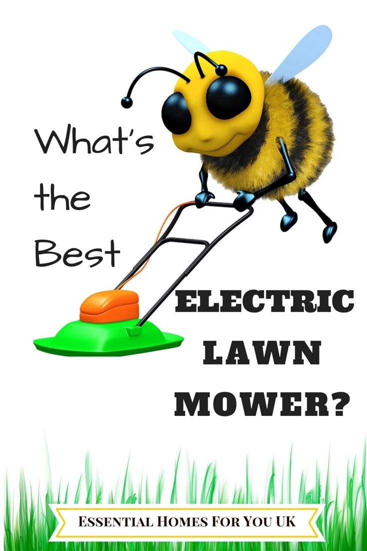 Finding the best lawn elelctric lawn mower can be frustrating and long winded if you don't know where to find the right information you need. You will have no problem finding that perfect elelctric lawnmower for you @ http://essentialhome4u.co.uk/top-3-best-electric-lawn-mower-recommendations/