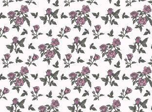 Pattern Pink Roses
