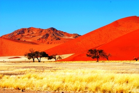 Magnificent Red Sand Dunes of the Sossusvlei, Namib area, Namibia