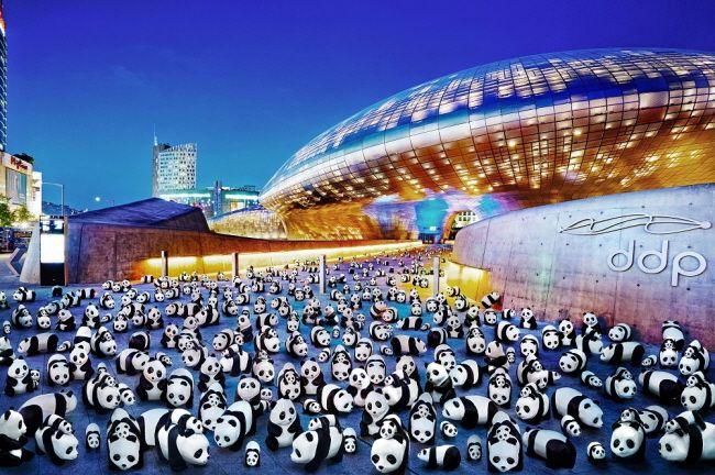 1800匹の紙パンダが韓国にやって来た!|韓国観光公社 #panda #seoul #ddp