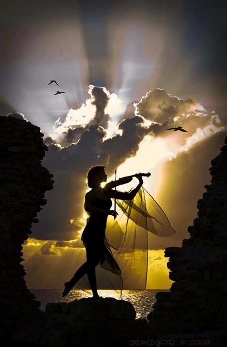 Al igual que un violinista en el claro de luna .....