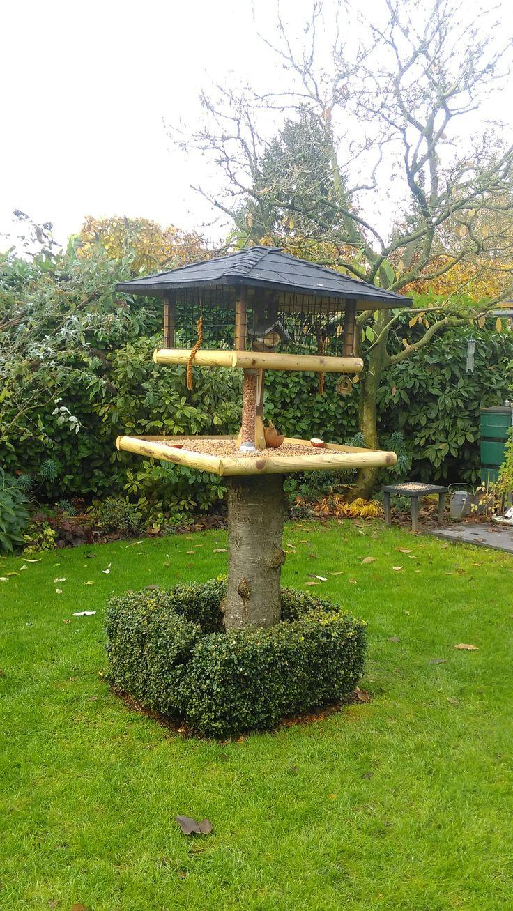 Super vogelvoederplaats in onze tuin.