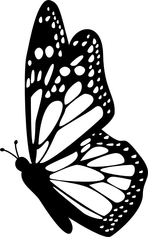 Butterfly side view with detailed wings free icon