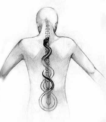 "Kundalini is a Sanskrit word meaning either ""coiled up"" or ""coiling like a snake."" There are a number of other translations of the term usually emphasizing a more serpent nature to the word - e.g. 'serpent power'."