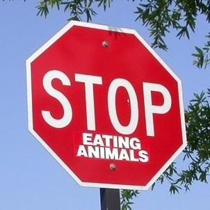 Stop Eating animals #AnimalRightsDays
