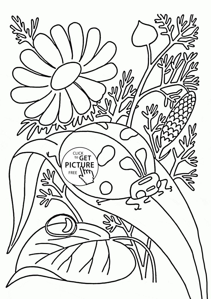 123 besten Seasons coloring pages Bilder auf Pinterest | Free ...