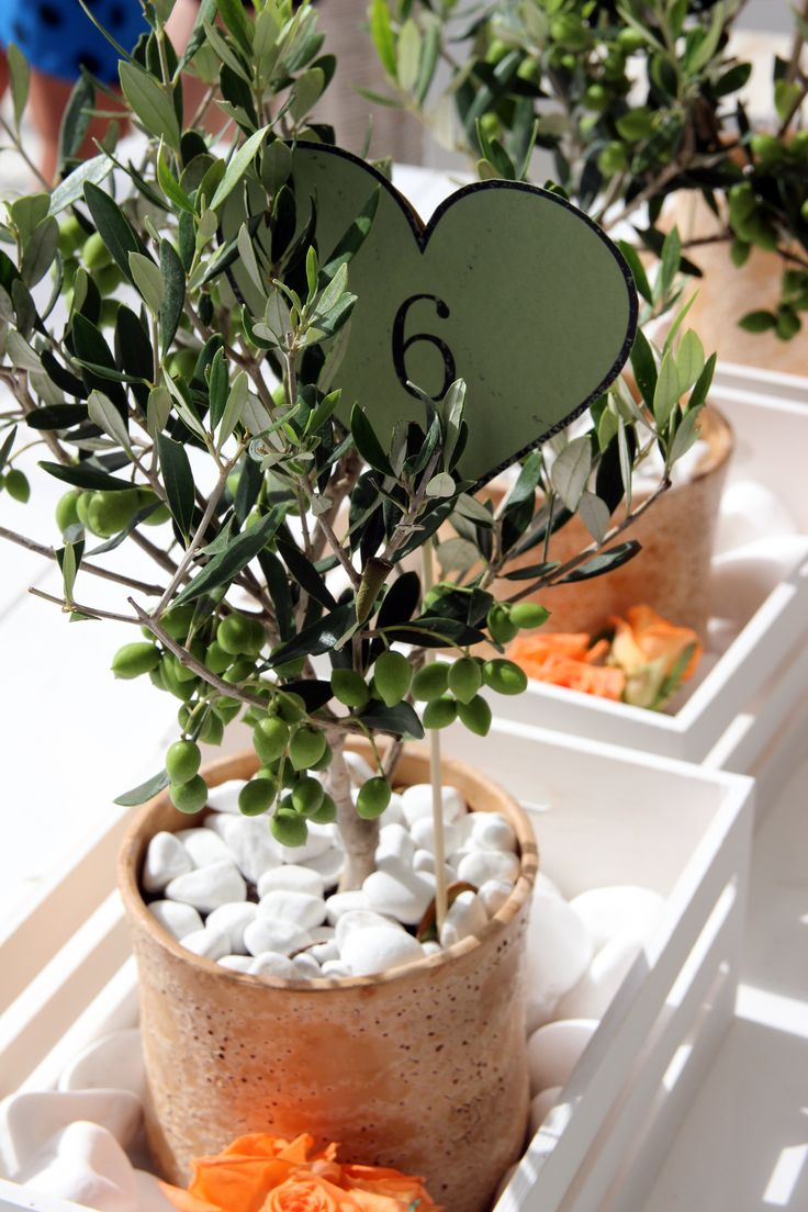 Olive themed table centerpiece. Islandevents.gr weddings and events in Naxos Greece. Photo Graham Fox Anemona Florist