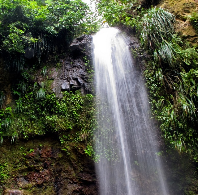 waterfalls st lucia | Toraille Falls - Soufriere, St. Lucia | Flickr - Photo Sharing!