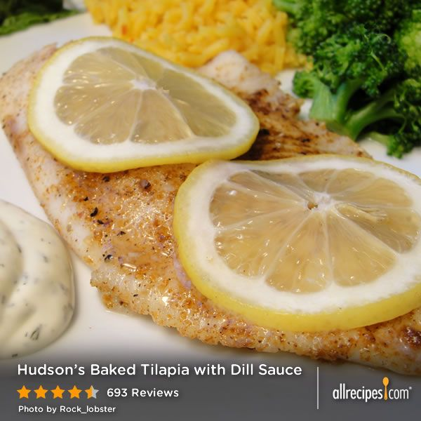 Hudson 39 s baked tilapia with dill sauce huge hit with for Baked fish recipe with sauce