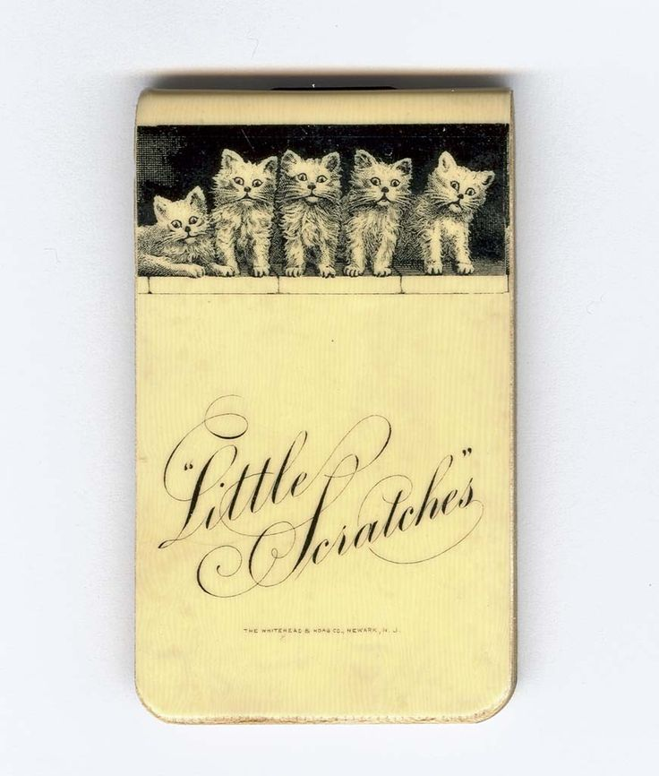 """A #MuseumCats object from our Medicine & Science collection: """"Little Scratches"""" cellulose nitrate notebook, 1903."""