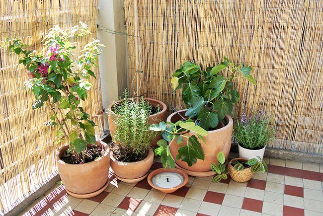 Home Renovation: Terrace Update via noglitternoglory.com